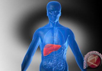 Dekan FKUI: Masyarakat kerap tak sadar idap hepatitis